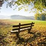 Herbst_n